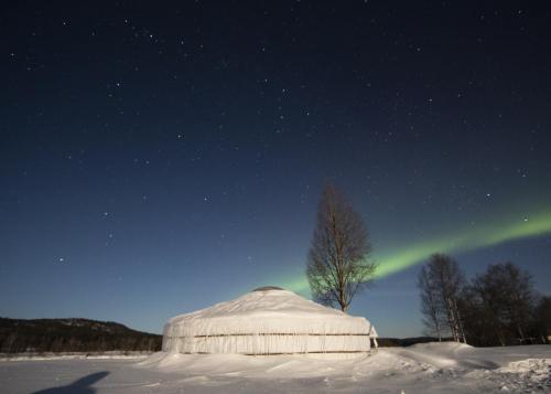 Yurt2 auroras