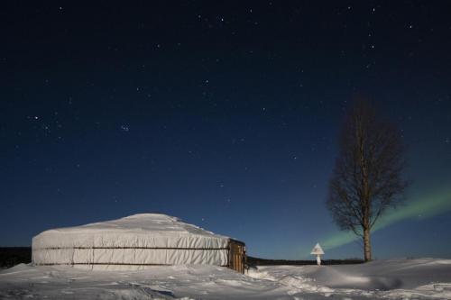 Yurt4 auroras